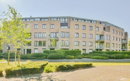 Ground floor for rent in Sint-Pieters-Woluwe